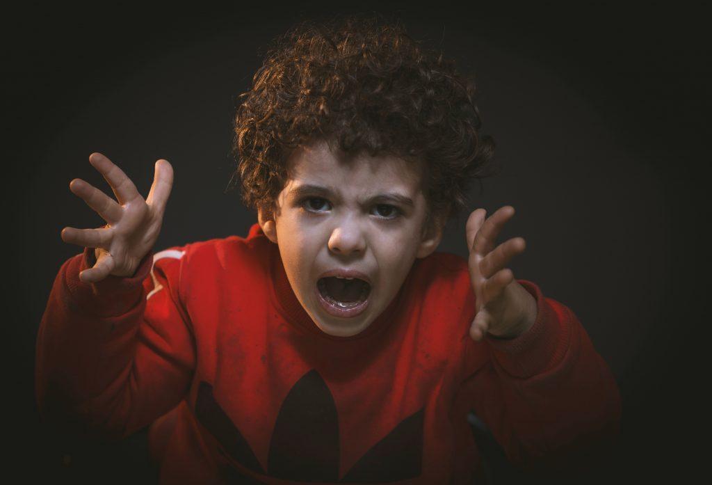 gere colere enfant pays basque